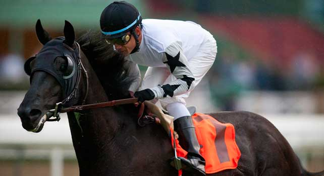 Slim Shadey with jockey David Flores aboard wins the San Marcos Stakes gate to wire at Santa Anita Park on February 10, 2012.