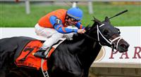20 June 09: Unbridled Belle and jockey Richard Migliore romp home with a win in the Obeah Stakes at Delaware Park in New Stanton, Delaware