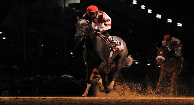 5 November 2010: Unrivaled Belle, ridden by Kent Desormeaux and trained by William I. Mott, cruises to victory in the Breeders Cup Ladies Classic at Churchill Downs in Louisville, KY. (Scott Serio/Eclipse Sportswire)