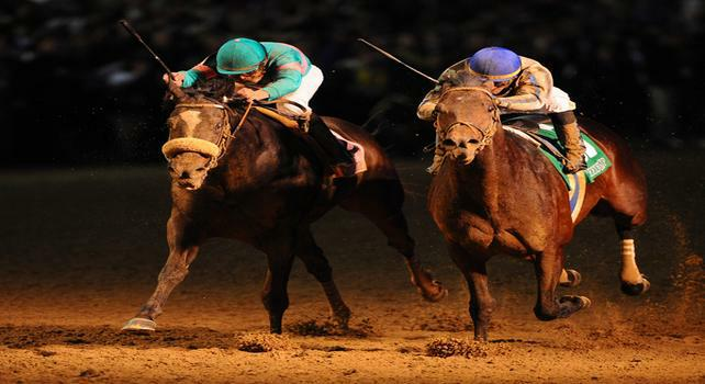 6 November 2010: Blame, ridden by Garrett Gomez and trained by Albert M. Stall Jr., narrowly hangs on to defeat Zenyatta, ridden by Mike Smith and trained by John A. Shirreffs, for the win in the Breeders Cup Classic at Churchill Downs in Louisville, KY. (Scott Serio/Eclipse Sportswire)