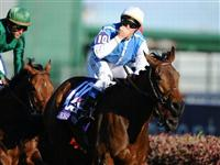 6 November 2010: Goldikova (IRE), ridden by Olivier Peslier and trained by Freddy Head, makes it three in a row with a come from behind win in the TVG Breeders Cup Mile at Churchill Downs in Louisville, KY. (Scott Serio/Eclipse Sportswire)