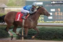 Acoma wins 2009 Azeri Stakes.