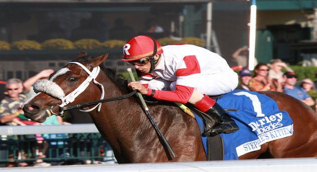 07 October 2011. #7 Stephanie's Kitten and John Velasquez win the 60th running of the Darley Alcibiades, GRI $400,000 at Keeneland Racecourse for owner/breeder Kenneth and Sarah Ramsey. This is the first Grade I winner for sire, Kitten's Joy.