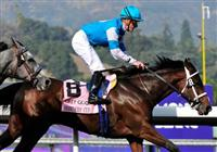 6 November 2009: Julien Leparoux on She Be Wild takes the G1 Breeder's Cup Juvenile Fillies at Santa Anita in Arcadia California.