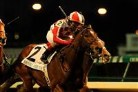 November 27, 2010: Santiva with Shaun Bridgmohan up wins the G2 Kentucky Jockey Club Stakes at Churchill Downs in Louisville, Kentucky.
