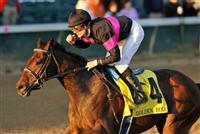 November 27, 2010: Kathmanblu with Julien Leparoux up wins the G2 Golden Rod Stakes for two year old fillies at Churchill Downs in Louisville, Kentucky.