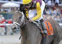 10 September 05: R Heat Lightning (no. 7), ridden by Garrett Gomez and trained by Todd Pletcher, wins the 119th running of the grade 1 Spinaway Stakes for two year old fillies at Saratoga Race Track in Saratoga Springs, New York.