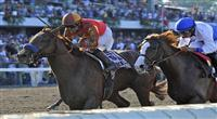 Coil (no. 1), ridden by Martin Garcia and trained by Bob Baffert, wins the 44th running of the grade 1 Haskell Invitational Stakes for three year olds on July 31, 2011 at Monmouth Park in Oceanport, New Jersey. (Bob Mayberger/Eclipse Sportswire)