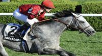 Turallure (no. 2), ridden by Julien Leparoux and trained by Charles Lopresti, wins the 53rd running of the grade 2 Bernard Baruch Handicap for three year olds and upward on August 26, 2011 at Saratoga Race Track in Saratoga Springs, New York. (Bob Mayberger/Eclipse Sportswire)