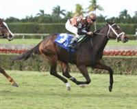 Salsa Bullet wire to wire John Franks Memorial Juvenile Fillies Turf $100,000