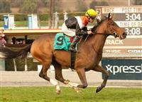 Diversy Harbor wins a Maiden Special Weight race at Santa Anita Park with Gary Stevens in the irons.
