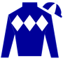 racehorsewriter Silks
