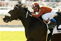 Gervinho wins the Zuma Beach Stakes with Rafael Bejarano.