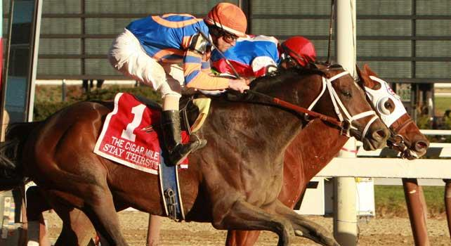 Stay Thirsty (N0. 1) with Ramon Dominguez aboard fights off the filly Groupie Doll to win the 24th running of the Grade I Cigar Mile for 3-year olds & up, going 1 mile at Aqueduct Racetrack. Trainer Todd Pletcher. Owner Repole Stables
