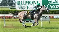 2011 05 30: Winter Memories with Jose Lezcano win the Grade 3 Sands Point Stakes for 3 year olds fillies at 1 1/16 mile, Belmont Park. Trainer James J. Toner. Owner Phillips Racing Partnership 