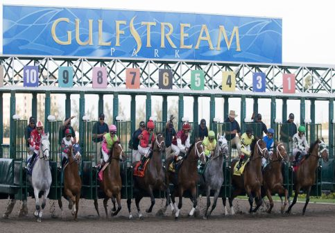6 February 2010: Horses out of the gate during Donn Handicap at Gulfstream Park in Hallandale Beach, FL.