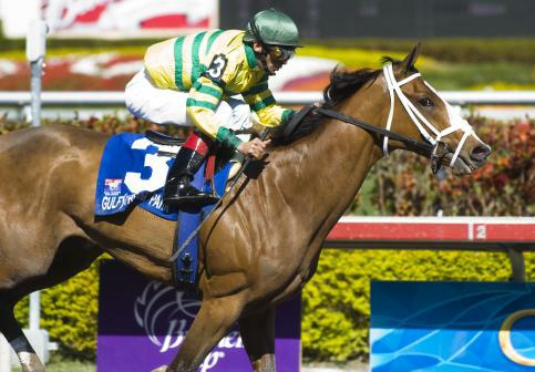 20 March 2010: Devil May Care and Jockey John Velazquez winning the Bonnie Miss Stakes at Gulfstream Park in Hallandale Beach, FL.