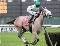 Winter Memories, Jose Lezcano aboard, winning the 2010 Miss Grillo Stakes at Belmont Park.