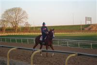 Mizz Liza workout @Arlington Park