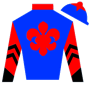 MelissaCook-Ward Silks