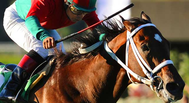 Oct. 8, 2011.Jeranimo ridden by Martin Garcia, winning the Oak Tree Mile at Santa Anita Park, Arcadia, CA