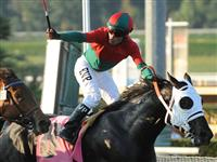 Oct. 15, 2011.Ultimate Eagle ridden by Martin Pedroza, crossing the finish line, wins the Oak Tree Derby at Santa Anita Park, Arcadia, CA