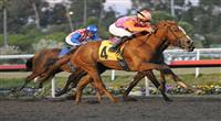 December 10, 2011.Killer Graces ridden by Joe Talamo taking the lead in the stretch and winning the Hollywood Starlet at Hollywood Park, Inglewood, CA