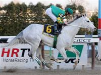 /horse/Inherit The Gold