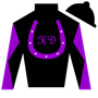HorseDynasty Silks
