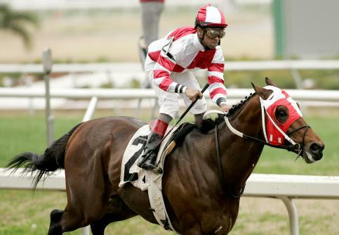 January 2010: Friesan Fire and Shaun Bridgmohan win the Louisiana Handicap at the Fairgrounds in New Orleans, La.