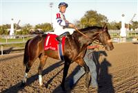 Jan 2011: Wilkinson and Garrett Gomez (1) after winning the Lecomte Stakes at the Fairgrounds in New Orleans, Louisiana.