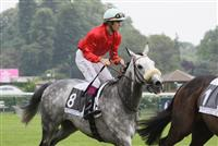 /horse/Le Larron
