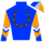 ChiaraTellini Silks