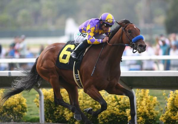 September 05 2010. Switch and Joel Rosario win the Torrey Pines Stakes at Del Mar Race Track in Del Mar CA..