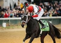 05 November 2010: Dubai Majesty and Jamie Theriot win the Breeders' Cup Filly and Mare Sprint at Churchill Downs, Louisville, KY.