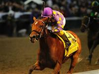 05 November 2010: Awesome Feather and Jeffrey Sanchez win the Grey Goose Breeders' Cup Juvenille Fillies at Churchill Downs, Louisville, KY.