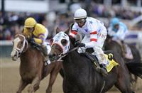 04 November 2010: Eldaafer and John Velazquez win the Breeders' Cup Marathon at Churchill Downs, Louisville, KY.