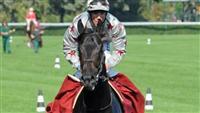 /horse/Dabirsim