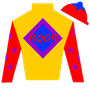 RuffianQueenOfRacing Silks