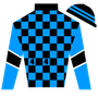 Thoroughbred44 Silks