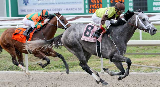Graydar ridden by Edgar Prado wins The 88th Running of New Orleans Handicap at Fair Grounds Race Course in New Orleans, Louisiana on March 30, 2013.