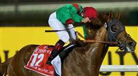 Animal Kingdom wins the Dubai World Cup on March 30th, 2013 at Meydan Racecourse
