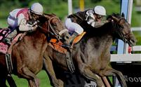 Afleet Express defeats Fly Down by a nose in the 2010 Travers Stakes