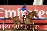 "The ""Dark"" Dubai World Cup Day Preview"