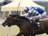 /horse/Al Kazeem
