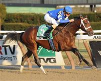 Alpha wins 2012 Count Fleet Stakes.