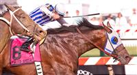 Alternation takes the Pimlico Special