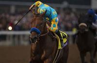 /horse/American Pharoah