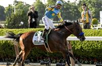 Haskell Next for American Pharoah