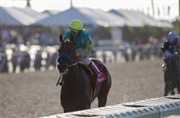 Horse Racing Nation Unveils Kentucky Derby 2016 Rankings